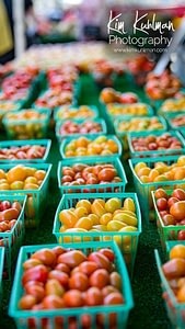 Little Italy Farmers Market Tomatoes